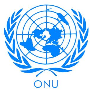 Convenzione ONU - Organizzazione delle Nazioni Unite